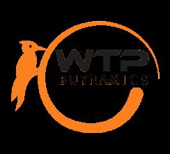 WTP Buynamics